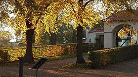 Landschaftsgarten-Fraenkel_Berlin-Kladow_Oktober 2017. Foto: Cornelia Diefenbach